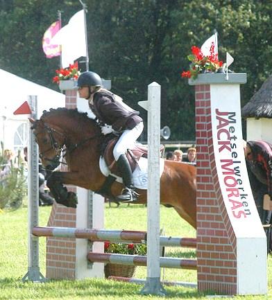 paardrijden springen pony filmpje