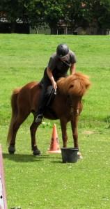 vrouw kwam klaar op paard