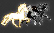 http://www.equuslibrium.nl/?page_id=3602